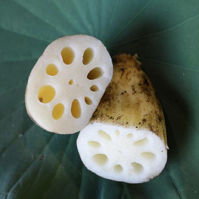 내만갯벌 연근 2kg